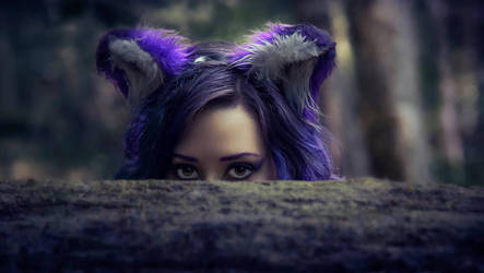 A Purple Fox Appears by Tristin-Vitriol
