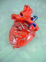 Bleeding Mending Heart - Back by monsterkookies