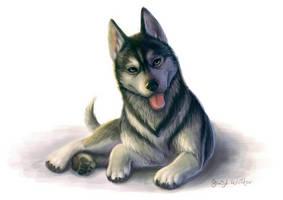 Happy Husky Pup by pyro-helfier