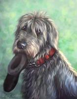 Irish Wolfhound Portrait by pyro-helfier