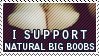 I Support Natural Big Boobs by Foxxie-Chan