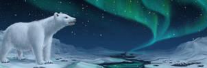 polar bear by Wictorian-Art