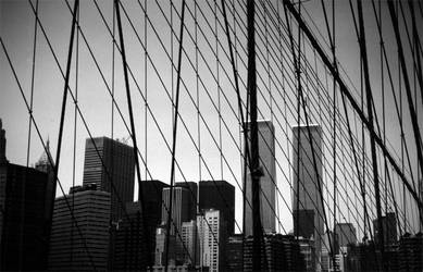 World Trade Center by butterflylr