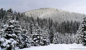Snowy idyll by lomartistic