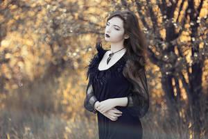 Raventale by artofinvi