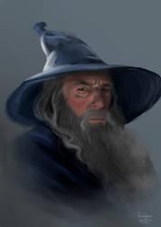 Gandalf portrait study by ThreeLeaves