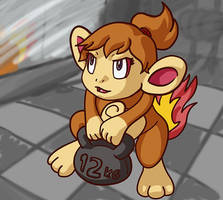 Chimchar at the Gym by faeore
