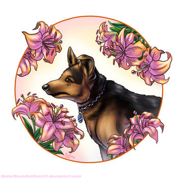 Shadow, the Tale of a German Shepherd by SailorMoonAndSonicX