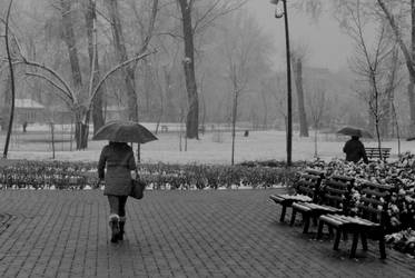 snowy day by DoroteaSanto