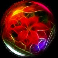 Poinsettia by LadyoftheApocalypse