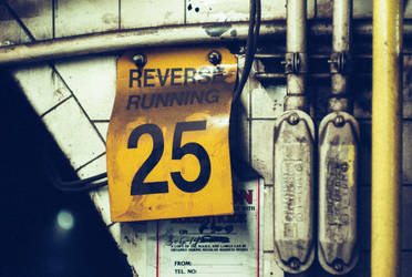 Run Backwards by FennecFoxen