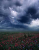 flower sky by ALiceFaux