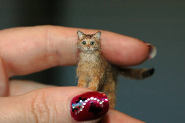 Miniature 1/12 scale Abyssinian cat commission by carine-cote