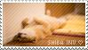 Shiba Inus by iDJPanda