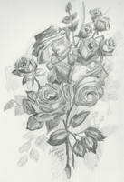 Roses by living4him