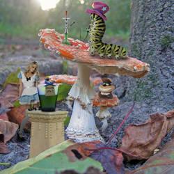 Wonderland... by mist3rbl4ck