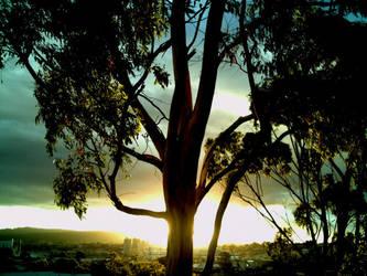 Rainy Sunset 7 by djupton68