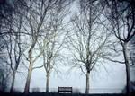 Winter's Tale by Erinti