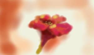 Un Flor by PeaceCrane13