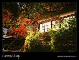 Shoji Window by rannedrop