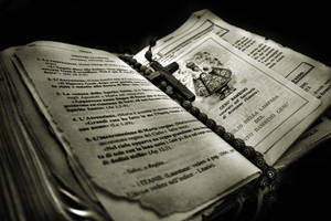 Mary's Bible by MichaelDeSanctis