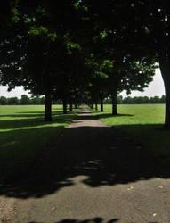 Doncaster Town Fields 3 by TheDarkestNight51