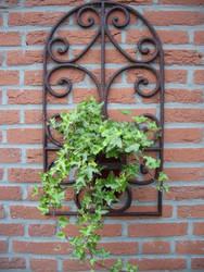 Plantt by A-mieke