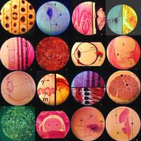Biology is Beautiful. by joelent