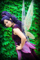 Pixie Hollow: Vidia's Wings by KoriStarfire
