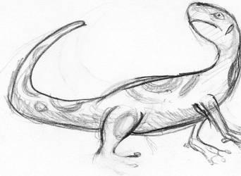 Gecko by pokesafari