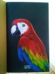 Macaw by Deleitesemcor