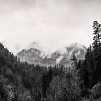 Mystifying by CharlieA-Photos