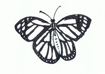 Doodle No.11 ''Black Butterfly'' by Felderanto
