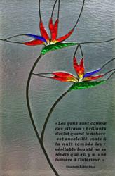 Citation de Elisabeth Kubler-Ross by corzorodia