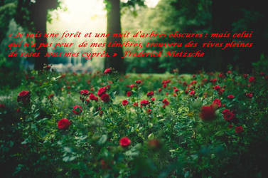 Citation de Friedrich Nietzsche by corzorodia
