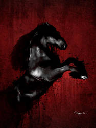 Horse by Roma2011