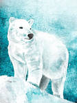 White Bear by Roma2011
