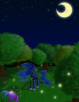 Wonders of the Night by TsukineSara
