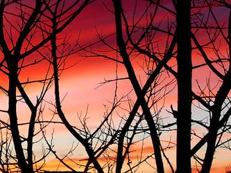 Sunset 2 by roushi
