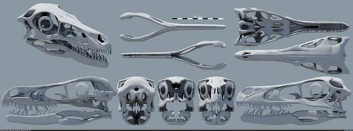 Velociraptor mongoliensis - Skull v3 by MithosKuu