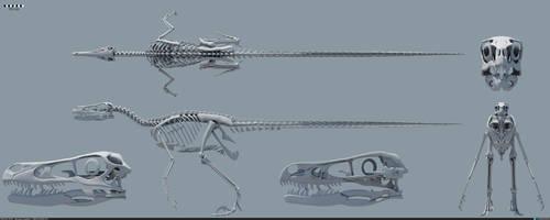 Velociraptor mongoliensis skeleton by MithosKuu