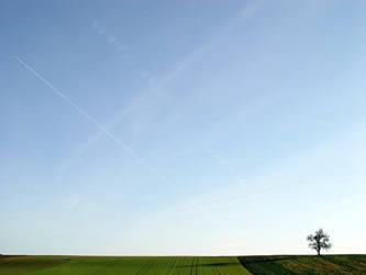 Landscape 01 by napoca