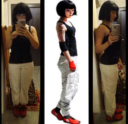 Wip Faith - mirror's edge by miss-prussia