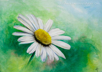 Margriet by Eluany