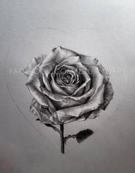 Rose by Eluany