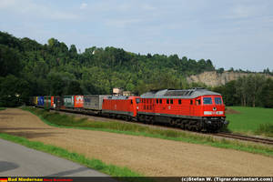 DB 232-703 by Tigrar