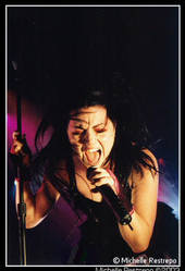 Amy lee of Evanescence by Micheller335