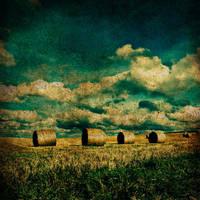 Calm field by MissHeartist