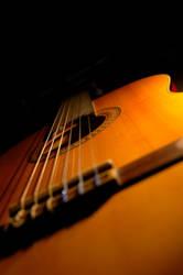 symphony of string by felixputri