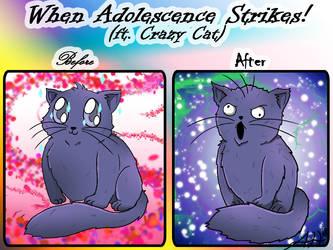 Crazy Cat Adolescence by Akemi-Hoshi532